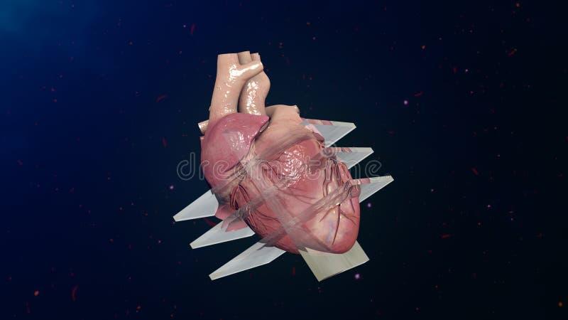 Ecocardiograma ilustração stock