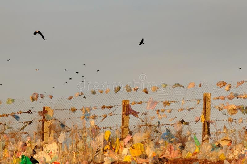 Ecológico; Imagens de Stock Royalty Free