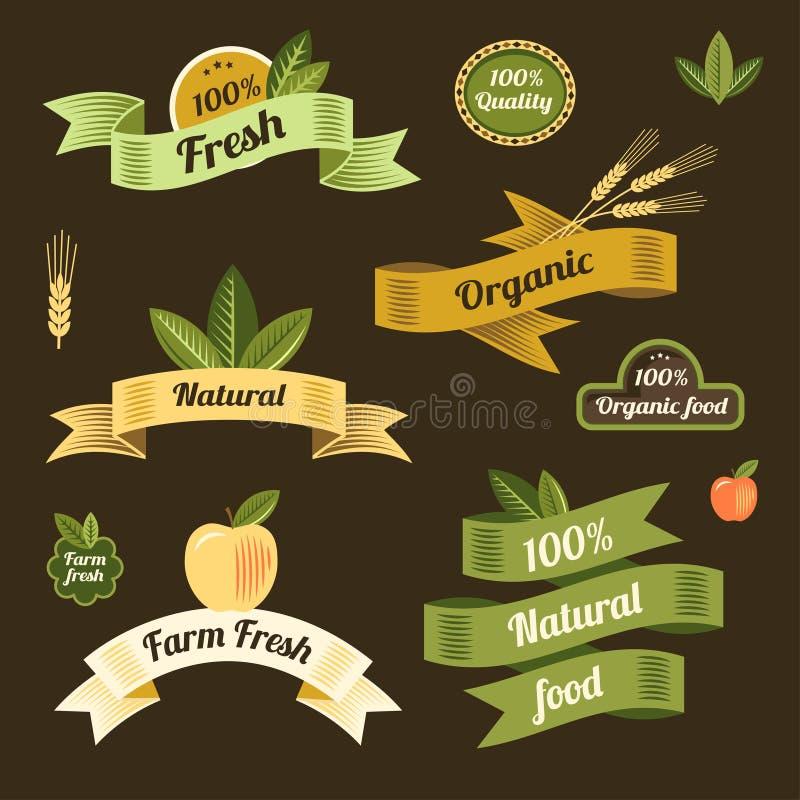 Ecolinten stock illustratie