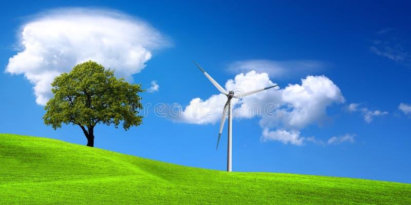 Ecología, naturaleza verde imágenes de archivo libres de regalías
