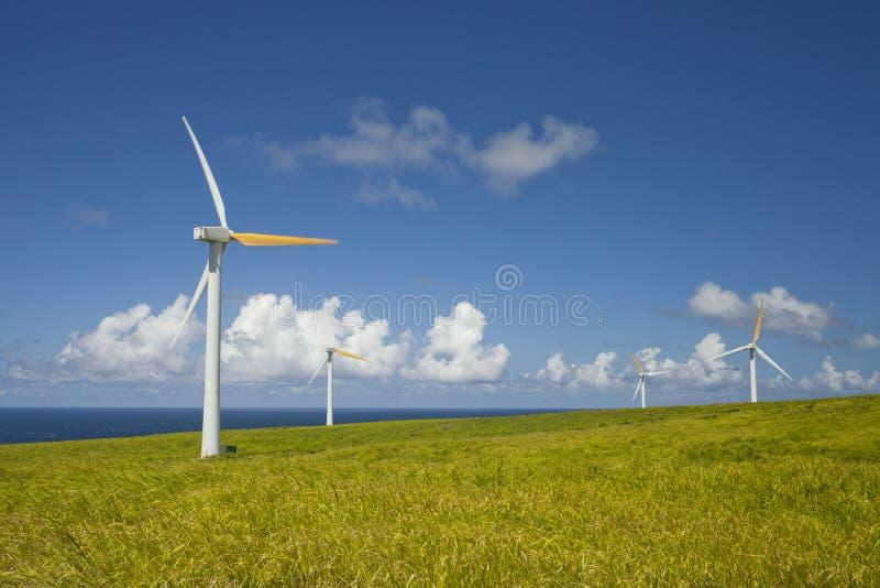 Ecología verde, fuentes de energía alternativas del viento