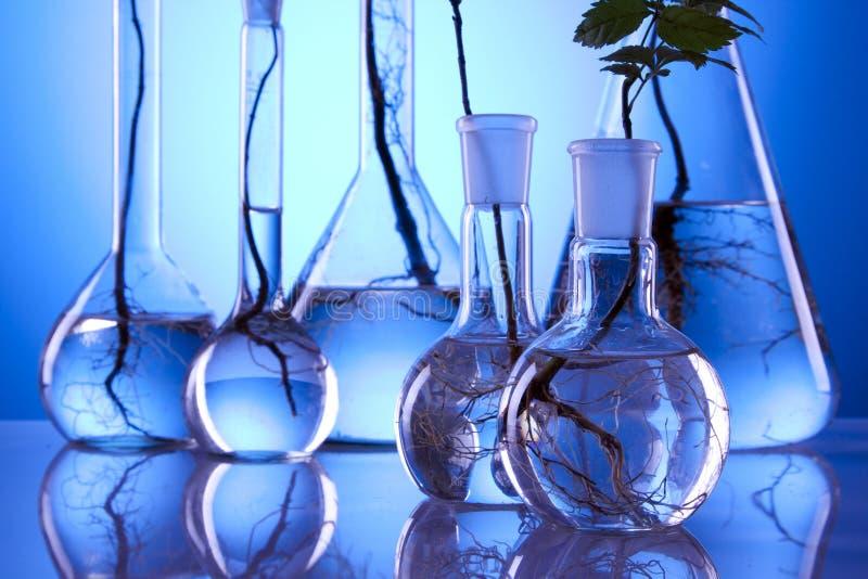 ecologic εργαστήριο στοκ φωτογραφία