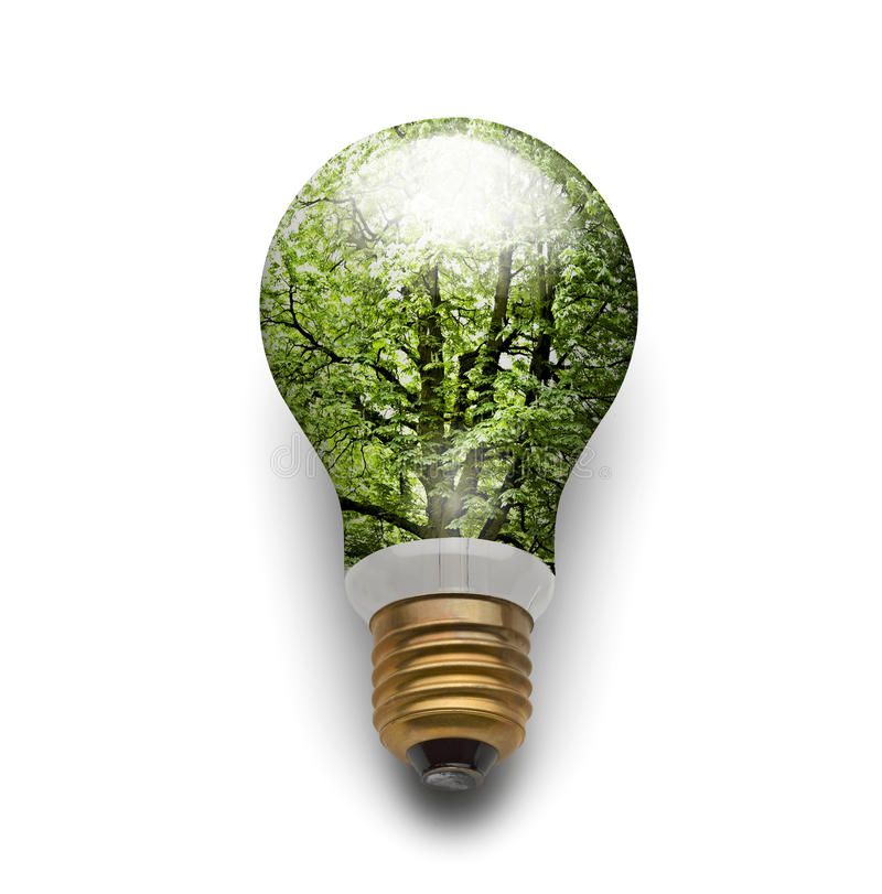 Ecological electric bulb lamp stock photography
