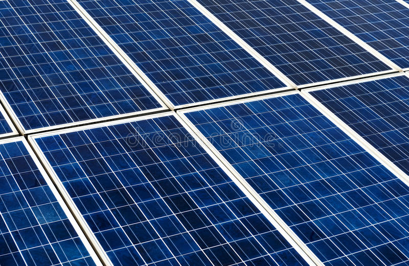 Ecological energy renewable solar panel plant. Photovoltaic panels - solar panel to produce clean, sustainable, renewable energy - alternative electricity source royalty free stock photo