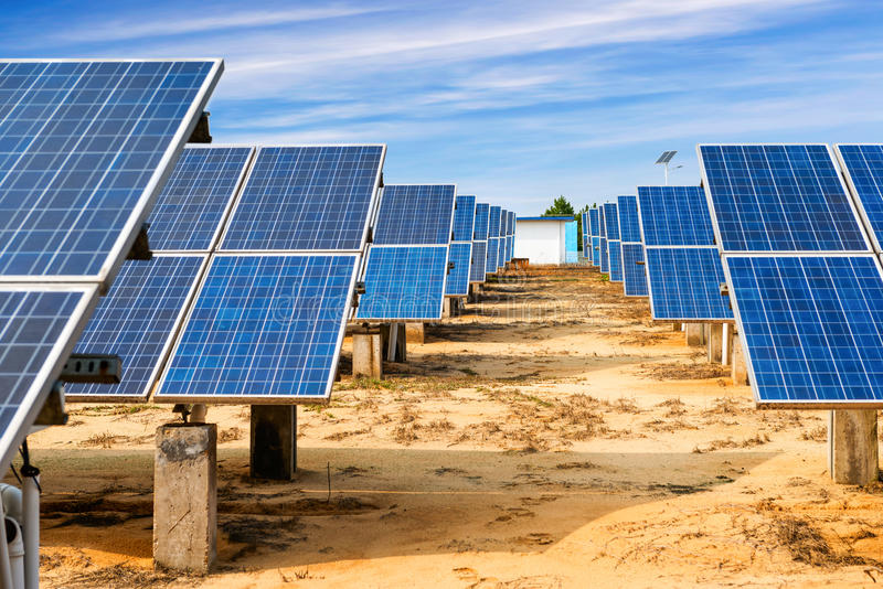Ecological energy renewable solar panel plant. Photovoltaic panels - solar panel to produce clean, sustainable, renewable energy - alternative electricity source royalty free stock image