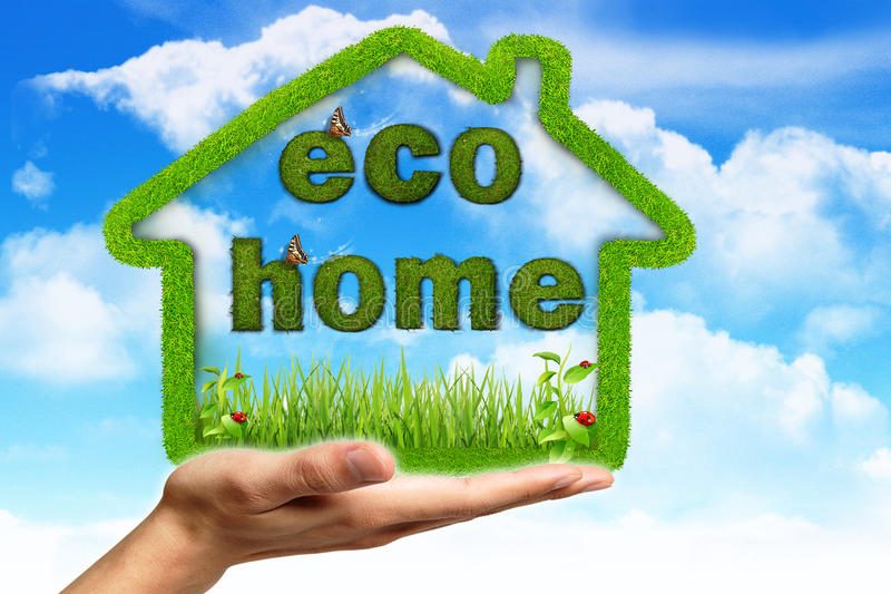 Ecological house vector illustration