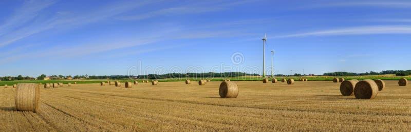 Ecological landscape royalty free stock photo
