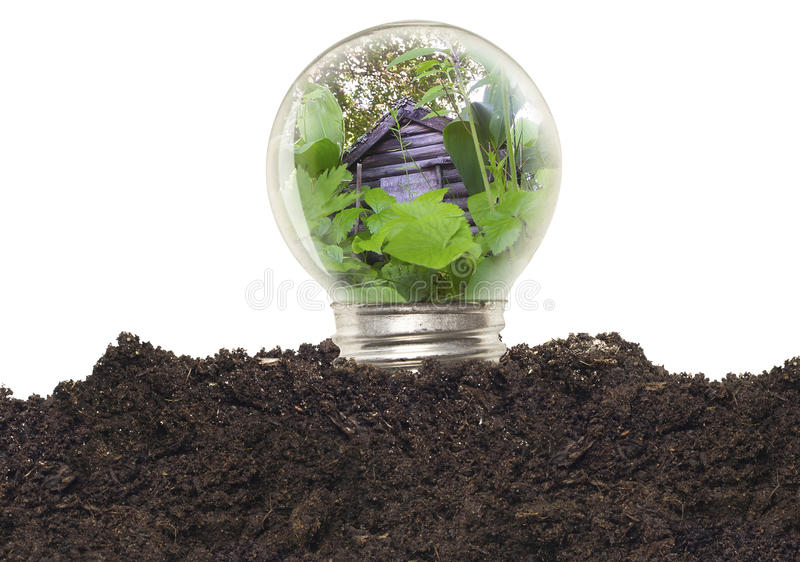 Download Ecological Light Bulb stock photo. Image of innovation - 23789232