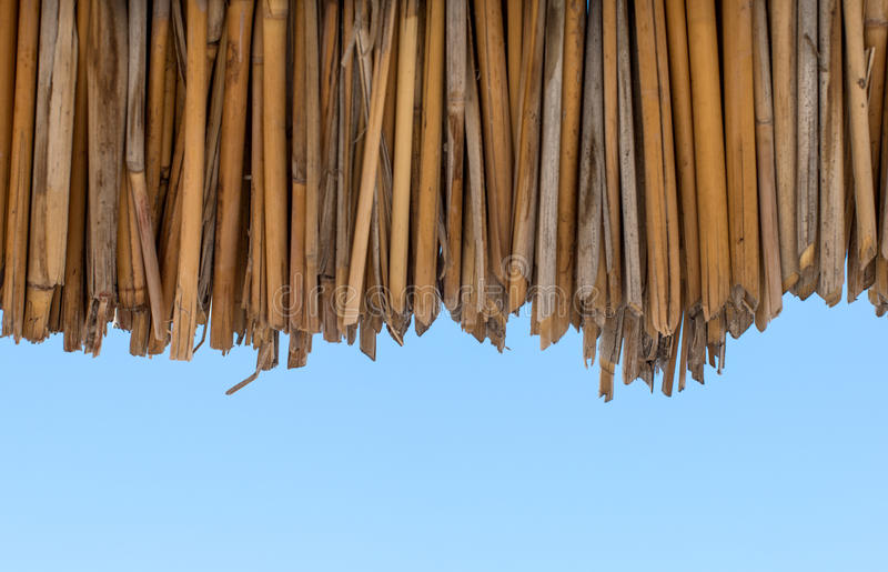 Ecological materials background of dried reeds. Background of dried reeds ecological materials stock photos