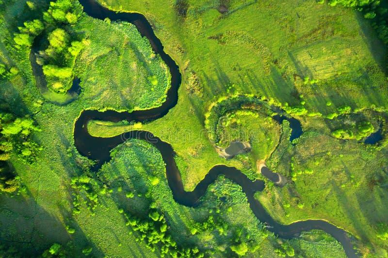 Ecologie en milieuconcept Groene aard van hierboven Satellietbeeld op rivierlandschap Gezonde aard royalty-vrije stock fotografie