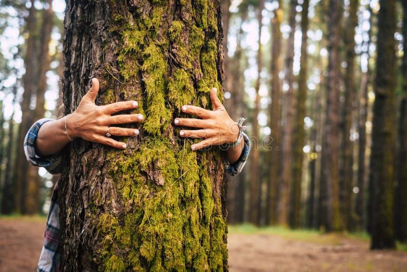 Ecologie en milieuconcept met Kaukasische mensenvrouw die een groene boom in het openluchtbos koesteren - aard en ecolevensstijl stock foto's