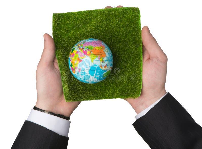 Ecologie van de Aarde royalty-vrije stock foto
