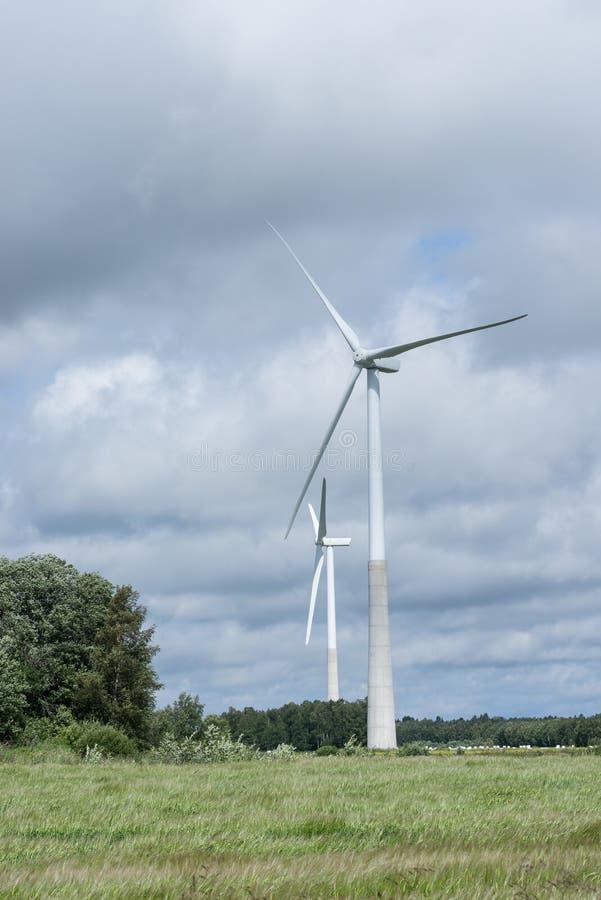 Ecologieconcept: Blauwe hemel, witte wolken, windturbine en gewassengebied Windgenerator voor elektriciteit, alternatieve energie royalty-vrije stock foto's