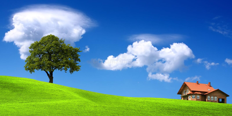 Ecologisch milieu royalty-vrije stock fotografie