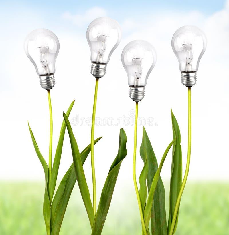 Ecologische energie royalty-vrije stock fotografie