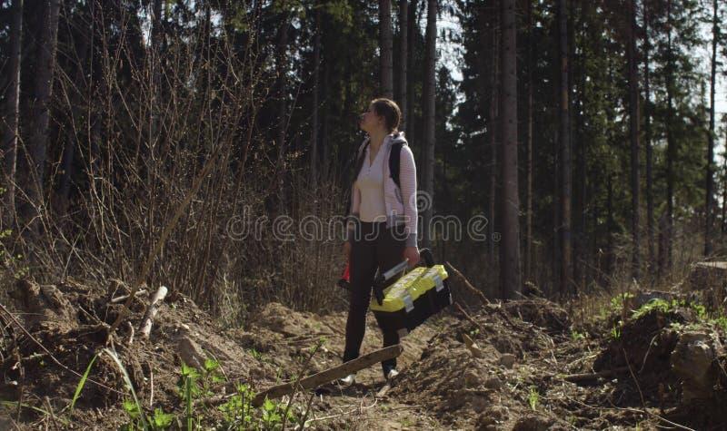 Ecologist op het bos felling stock foto's