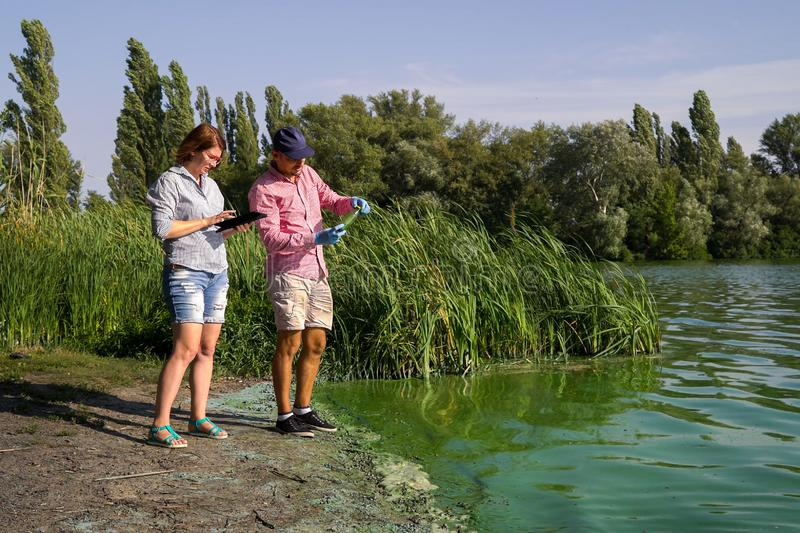 Ecologists research green algae sample taken in river and enter data on tablet. Analysis of ecological problems. environment, nature, save earth stock images