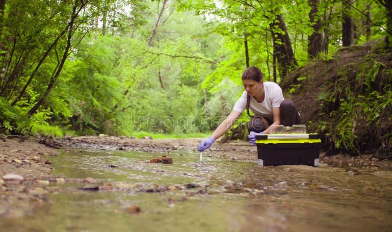 Ecologo della donna che preleva i campioni di acqua da The Creek fotografia stock
