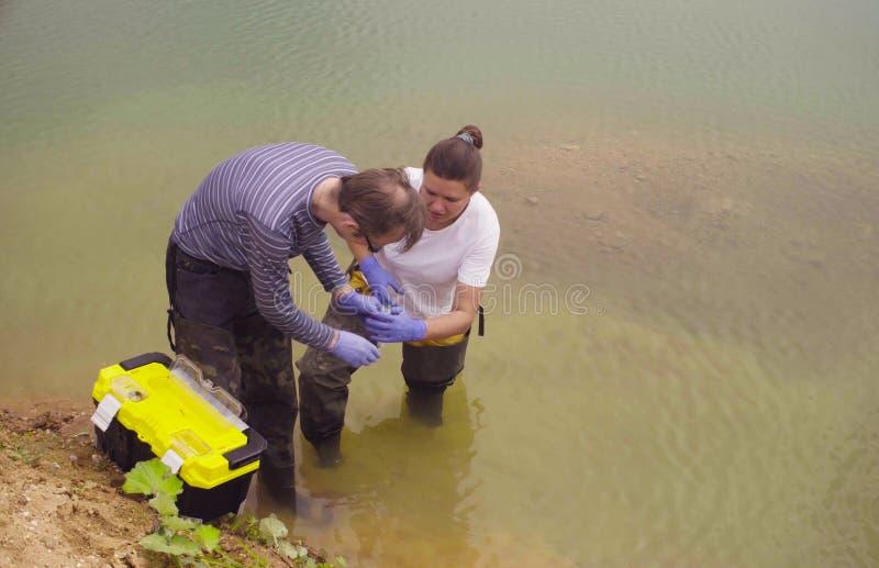 Ecologo dello scienziato della donna e dell'uomo che preleva i campioni di acqua fotografia stock