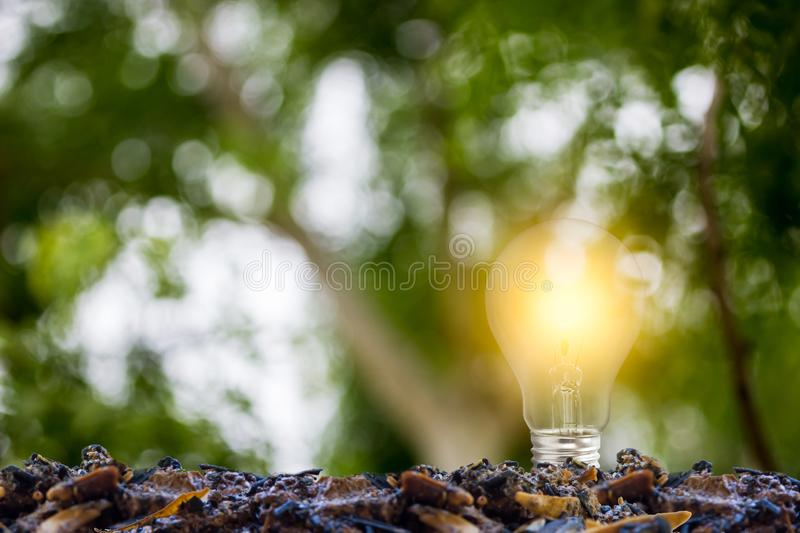 Ecology concept. Growing light bulb on a good soil with green nature background. Depicts a sustainable energy by eco-system stock images