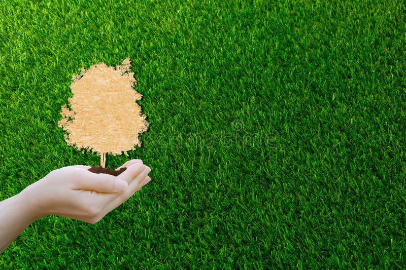Ecology concept paper cut human hands holding big plant tree with on world environment stock photography