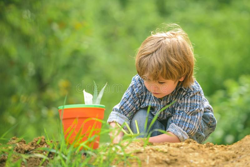 Ecology and nature. The boy is digging the ground. Pure organic products. Children and nature. Happy boy on the farm. royalty free stock photography