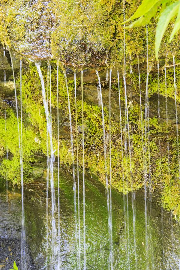 Ecology and nature. The source of clean drinking spring water among stone rocks and moist fresh green moss. Spring. `Wailing Wall` in the Saratov region village stock photo