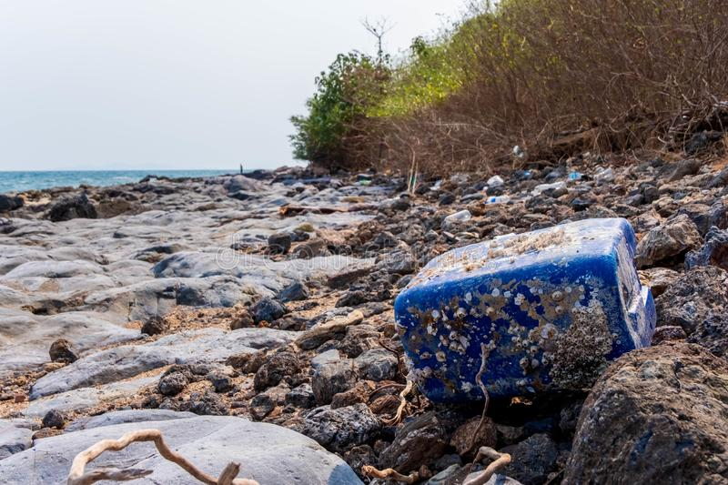 Ecology plastic container with mollusks in the beach. Ecology plastic container with mollusks at the beach stock photo