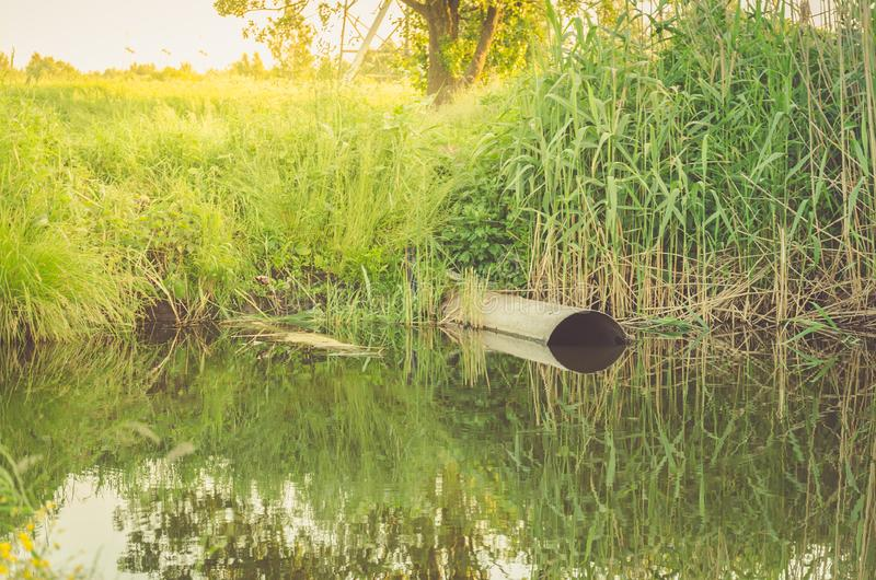 Ecology subject: sewer pours out waste to the lake/sewage from the sewer pollutes a lake. Ecology subject: sewer pours out waste to the lake/ sewage from the royalty free stock images