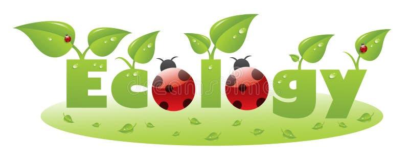 Ecology text caption with ladybug royalty free illustration