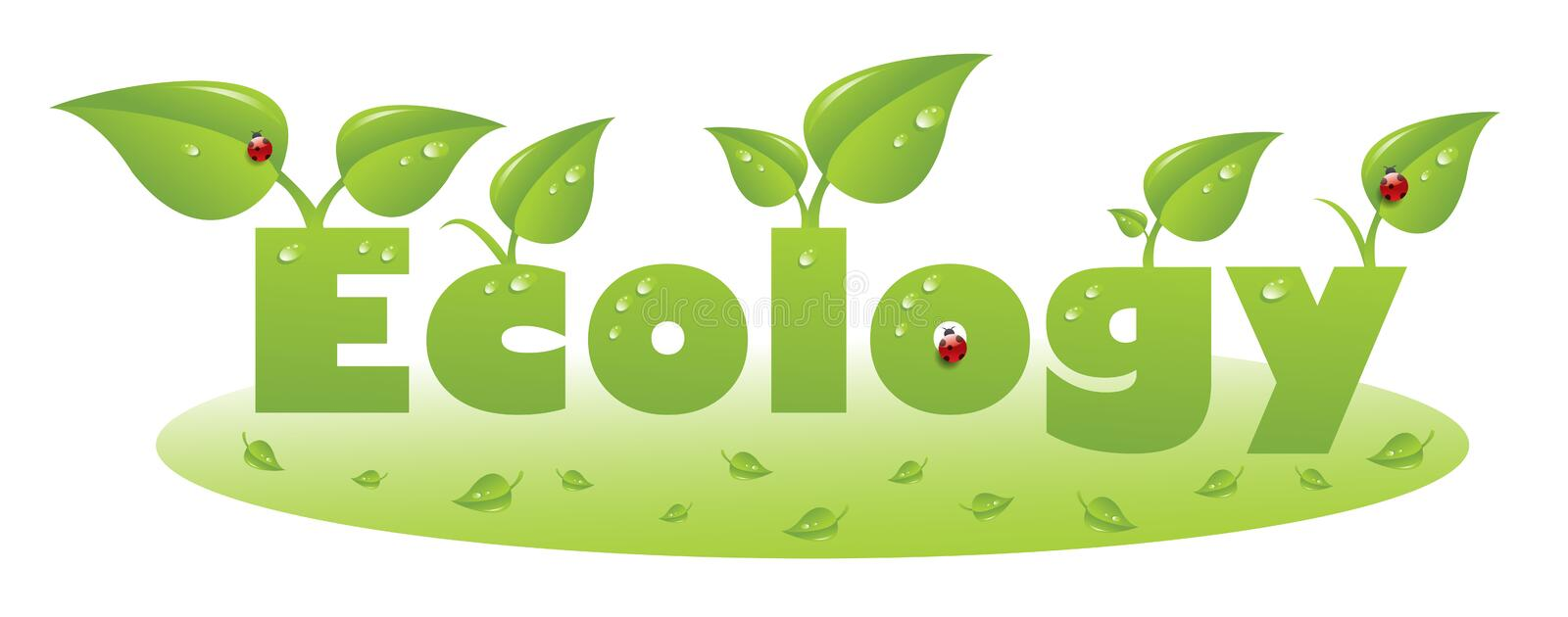 Ecology text caption with ladybug and green leaves royalty free illustration