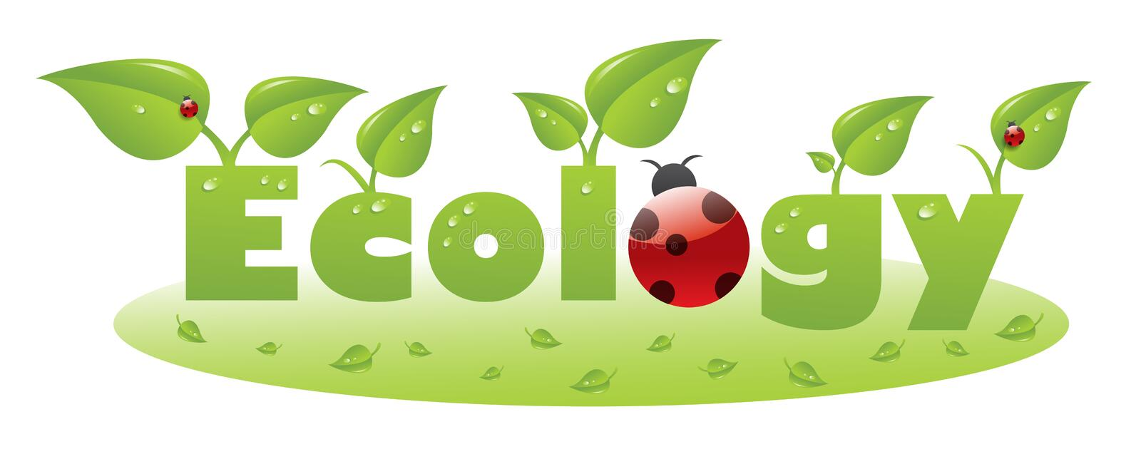 Ecology text caption with ladybug and green leaves vector illustration