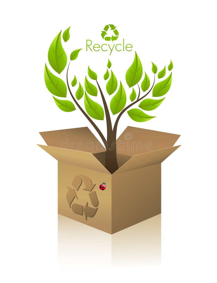Ecology tree. A tree growing inside a carton box vector illustration