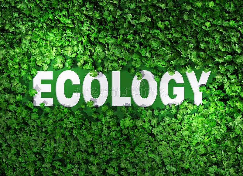 Ecology word among the grass royalty free illustration