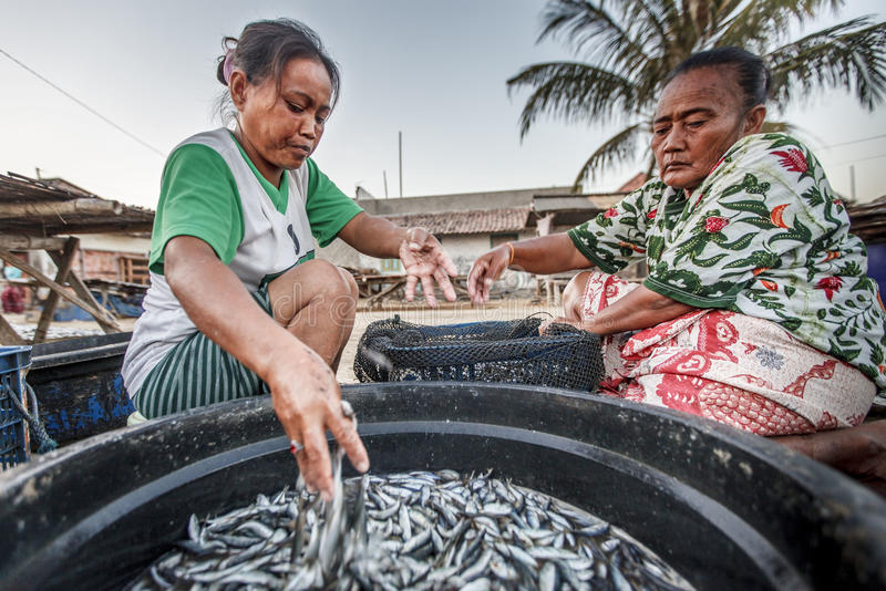 ECONOMÍA MARÍTIMA DE INDONESIA fotografía de archivo libre de regalías