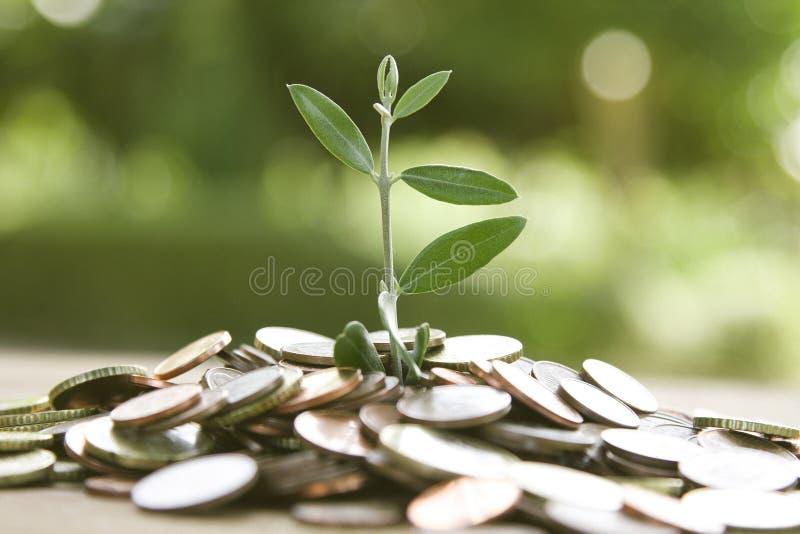 Economia e finança imagem de stock