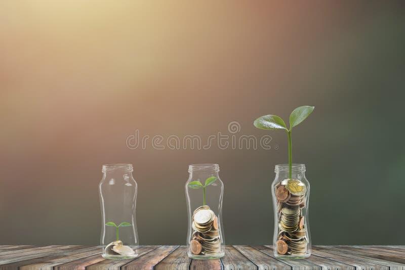 Economia e investimento Conceito do neg?cio e da finan?a Uma planta do crescimento em moedas da pilha no frasco de vidro que cres imagens de stock royalty free