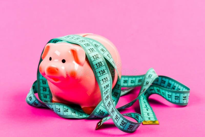 Economie en financiën Varkensval BEGROTINGScrisis Planningsbegroting Bedrijfsprobleem Beperkt of beperkt Ge?soleerd op wit stock foto