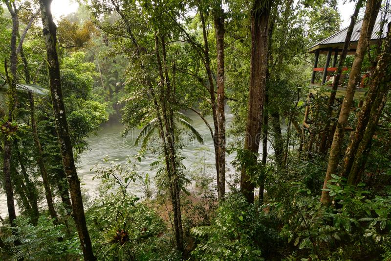 Ecoresort vicino al fiume di Mossman Shire di Douglas queensland l'australia fotografie stock