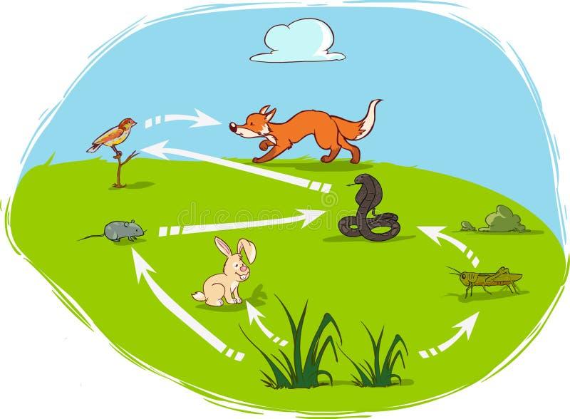 Ecosysteem-diagram vector illustratie