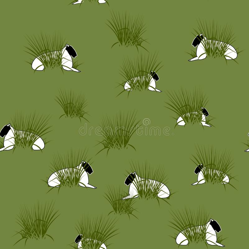 Ecosystem, Grass, Fauna, Flora Free Public Domain Cc0 Image