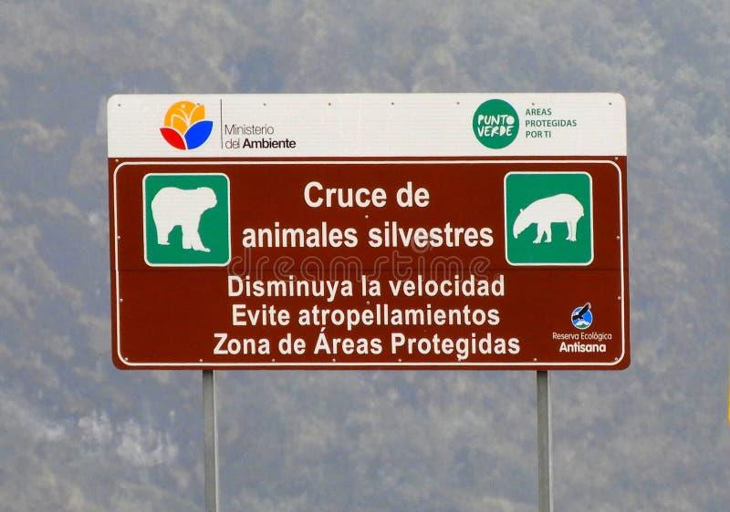 Ecuador: cartello dei manifestanti che avvertono gli animali in strada fotografie stock libere da diritti