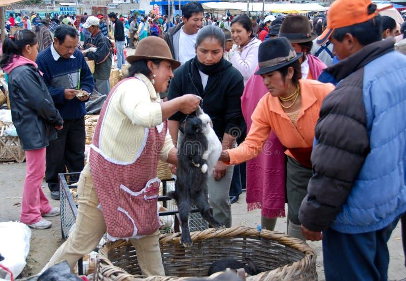 Ecuadorian people in a local market royalty free stock photos