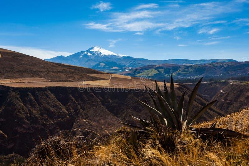 Ecuatoriaans landschap, Cayambe-vulkaan royalty-vrije stock afbeeldingen