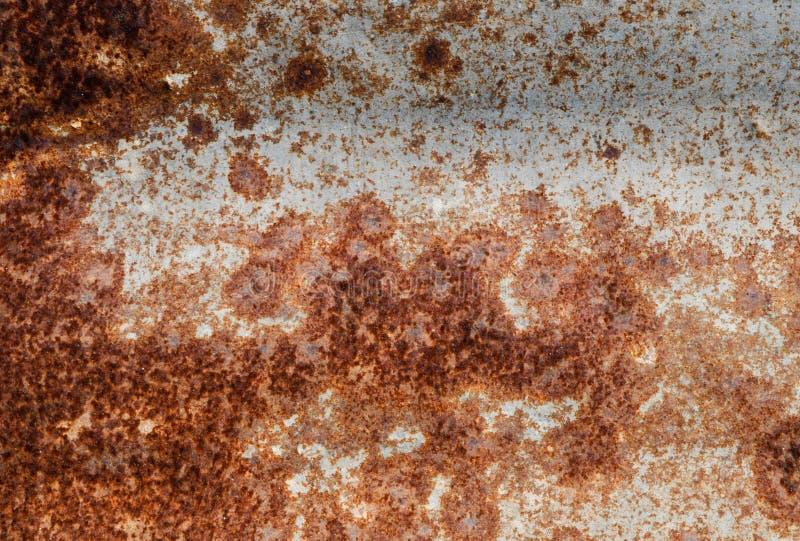 Ed rost på väggen av behållaremetallen förföll skrynklig bred bakgrund för arket Ridit ut j?rn Rusty Isolated Metallic Texture arkivfoton