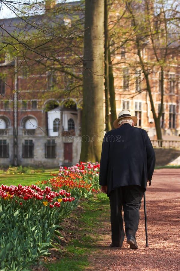 Edad avanzada en primavera imagen de archivo libre de regalías