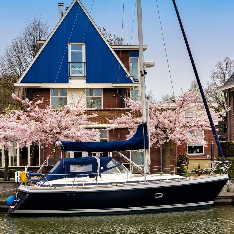 EDAM, PAÍSES BAIXOS - 14 DE ABRIL DE 2018: Casa holandesa tradicional com iate e árvore de florescência da mola na margem do cana fotografia de stock