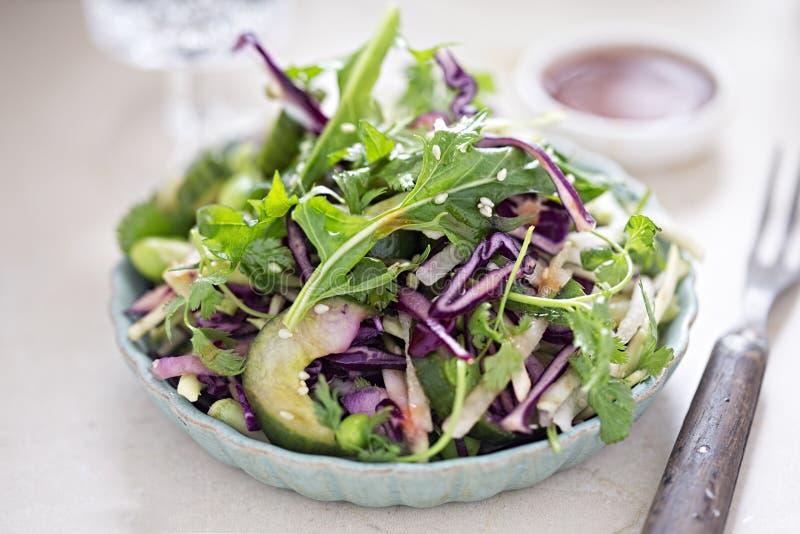 Edamame de chou, salade de soja - le brocoli, le concombre, les graines de sésame de coriandre et le soja déchiquetés chaulent l' images stock