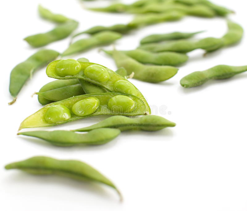 Edamame nibbles, boiled green soy beans, japanese food. Isolated on white royalty free stock photo