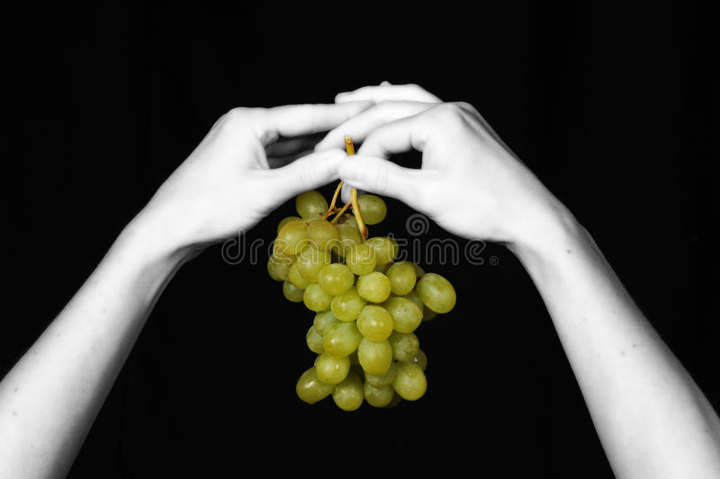 Download Eden 010 stock photo. Image of woman, arms, white, fruit - 12625616